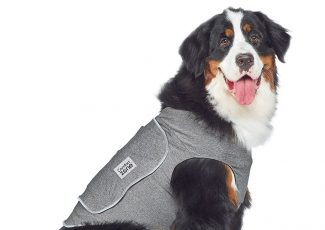 Fourth of July: Keep your dog calm, safe during fireworks with this protective vest