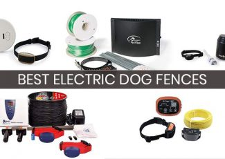 5 Best Electric Dog Fences: Compare, Buy & Save (2018)