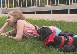 Anonymous donor gives Chattanooga girl a service dog