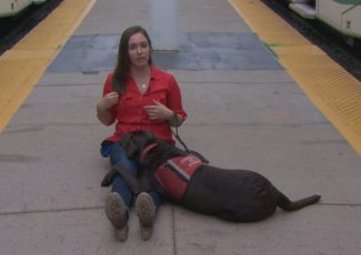 Autism service dogs can keep a child safe and calm, but their trainers aren't always allowed in public places