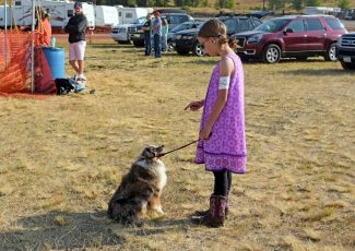 Dog show teaches 4-H'ers patience, creates bonds between animal and owner at Routt County Fair
