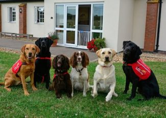 Medical Detection Dogs – the science behind the sniff