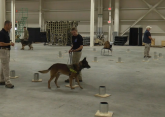 Military K-9 Teams Take Explosive Detection Test