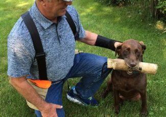 Training hunting dogs is a must before season begins