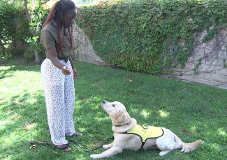 Cool Kid Bekah Brooks gives back by training future guide dogs