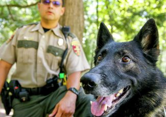 DNR K-9 never stops working